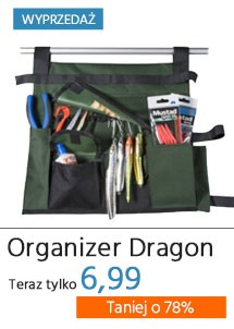 Organizer Dragon