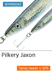Pilkery Jaxon