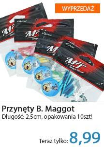 B. Maggot