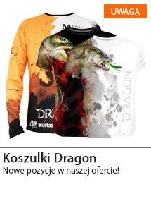 Koszulki Dragon