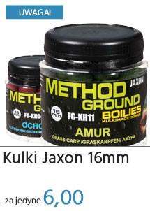Kulki Jaxon