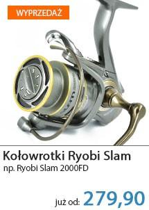 Kołowrotki Ryobi
