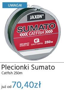 Plecionki Sumato Catfish